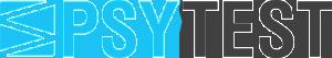 Ledarstilstest med Psytest